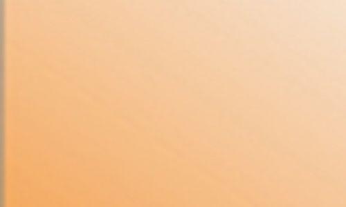 orange24B61F38-4E7A-7CCD-9CF5-DF570E2EA82E.jpg