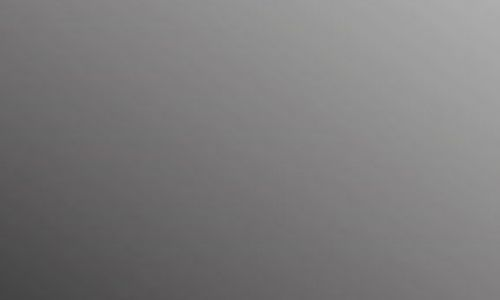 schwarz9F3EA889-D73D-2246-0301-482115BFF27F.jpg